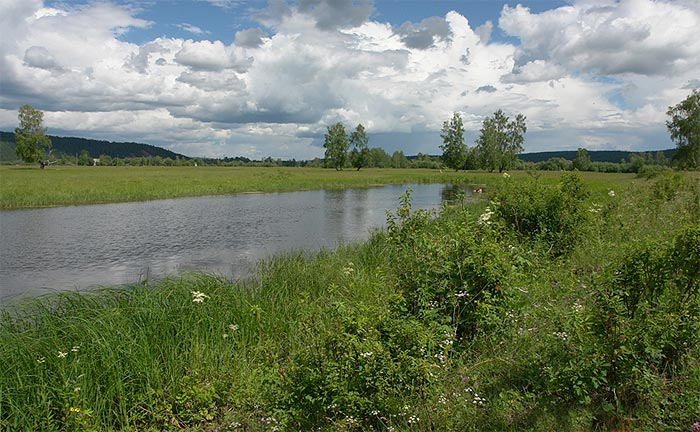 Природа района66
