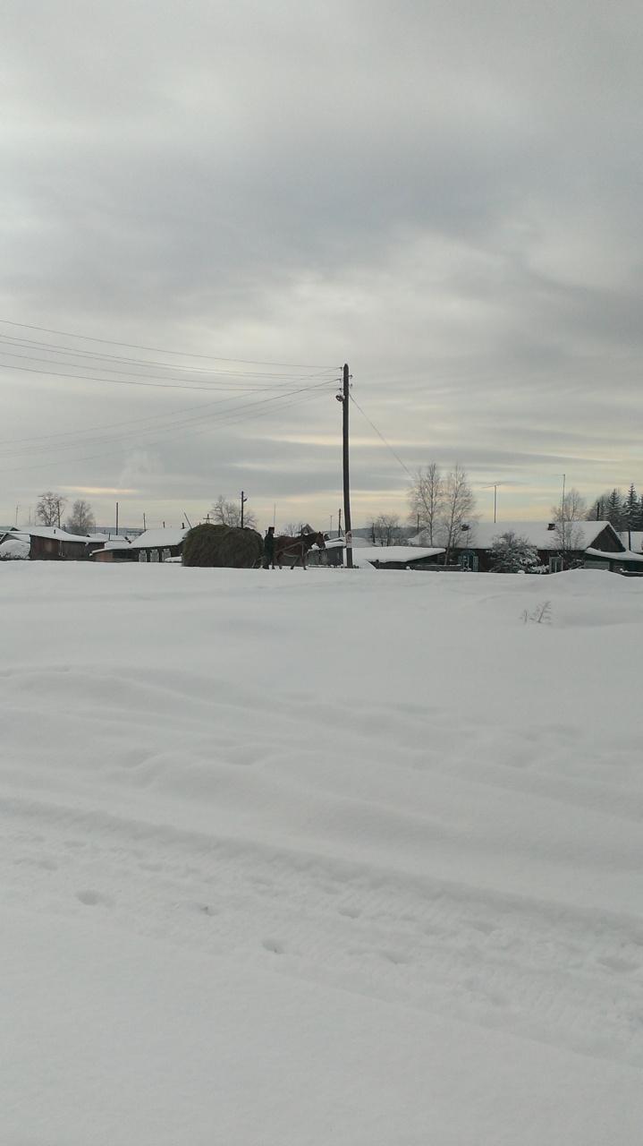 с.Казачинское, 8 декабря  2015