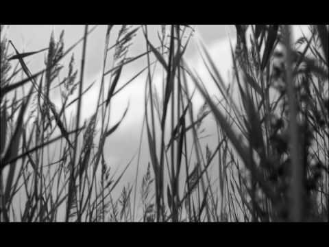 "kirenga-smi.ru Noize MC ""Выдыхай"""