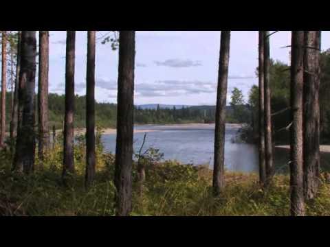 Казачинско - Ленский район (природа)