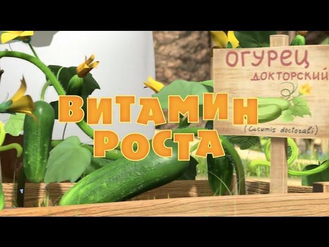 Маша и Медведь - Витамин роста (Серия 30)