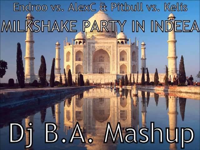 Endroo vs. AlexC & Pitbull vs. Kelis - Milkshake Party in Indeea (Dj B.A. Mashup)