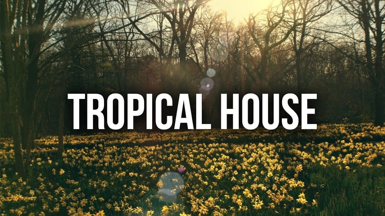 New Tropical House Mix   Remixes Of Popular songs! #3