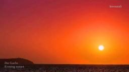 Der Luchs – Evening sunset